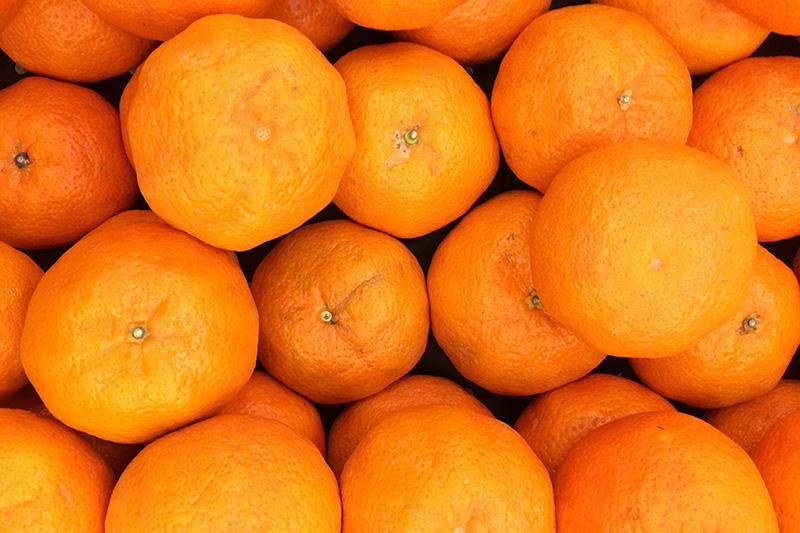 jaga-imun-dengan-makan-buah-segar